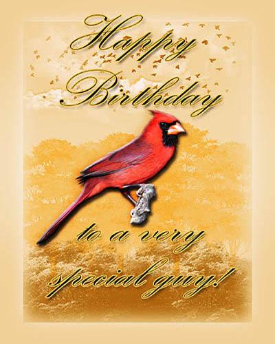 Cardinal Birthday For Him Free Birthday for Him eCards