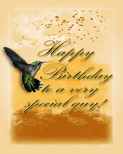Hummingbird Bday Wish Free Birthday For Him ECards 123