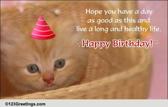 Kitties Say Happy Birthday! Free For Best Friends ECards