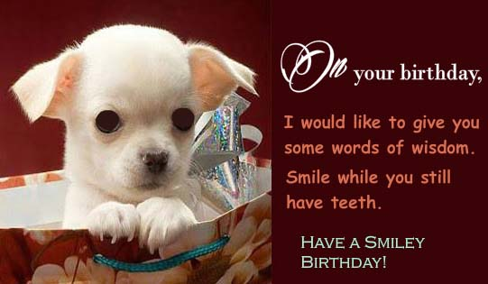Some Words Of Wisdom Free Funny Birthday Wishes ECards Greeting Cards 123 Greetings