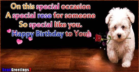 A Special Rose For Someone So Special Free Happy Birthday