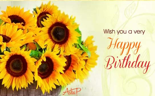 Sunny Birthday Flowers Amp Wishes Free Happy Birthday ECards 123 Greetings