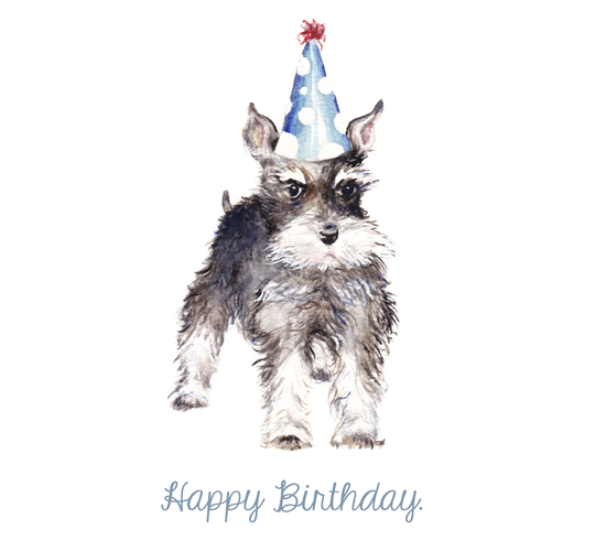 Happy Birthday Schnauzer Free Pets ECards Greeting Cards