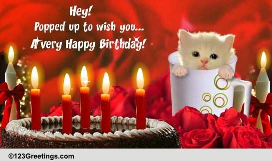 Birthday Pets Cards Free Birthday Pets ECards Greeting