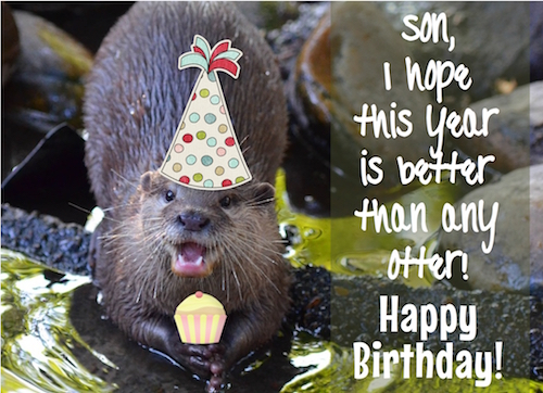 A Birthday Like No Otter For My Son! Free For Son