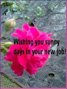 Sunny Days In New Job Free At Work Etc ECards Greeting