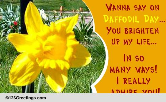 You Brighten Up My Life Free Daffodil Day ECards
