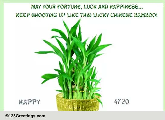 Chinese Good Luck Bamboo Free Good Luck Symbols Amp Fortune ECards 123 Greetings