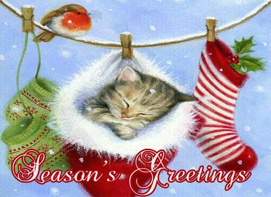 Seasons Greetings Warm Wishes Cards Free Seasons