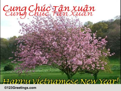 Happy Vietnamese New Year Free Vietnamese New Year ECards 123 Greetings