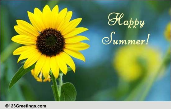 A Smiling Summer Sunflower Free Happy Summer eCards Greeting Cards  123 Greetings