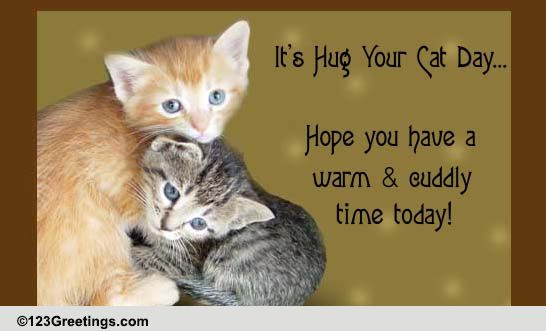 Warm & Cuddly Day Free Hug Your Cat Day ECards