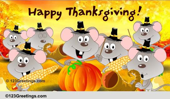 A Fun Thanksgiving Song Free Happy Thanksgiving ECards Greeting Cards 123 Greetings