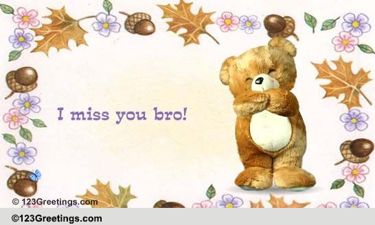 Miss You! Free Brother ECards Greeting Cards 123 Greetings