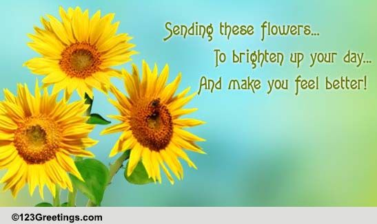 Brighten Your Day! Free Get Well Soon ECards Greeting