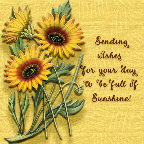 May Your Day Be Full Of Sunshine Free Have A Great Day ECards 123 Greetings