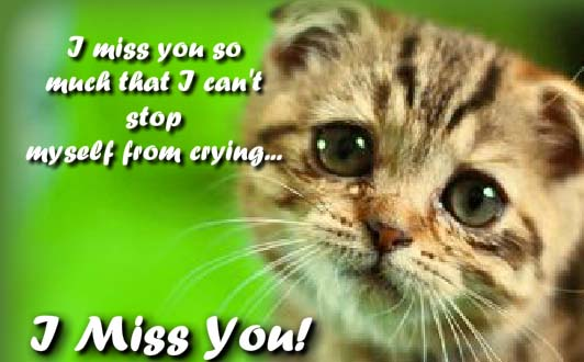 Cannot Stop Crying! Free Miss You ECards Greeting Cards
