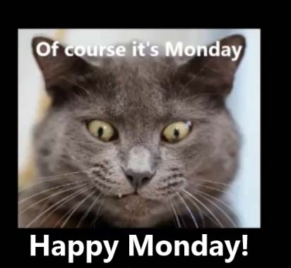 Cheer Up Monday Blues Free Monday Blues eCards Greeting