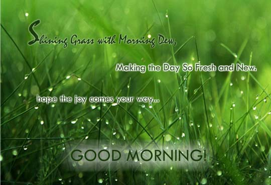 Making The Day So Fresh And New! Free Good Morning ECards