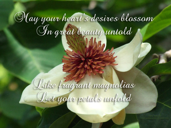 May All Your Dreams Come True Free Poetry ECards