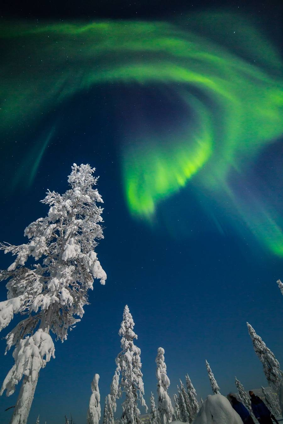 Northern Lights Finland Holiday