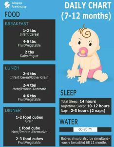 also my baby enter month plz food chart suggest me weight gain rh babygogo
