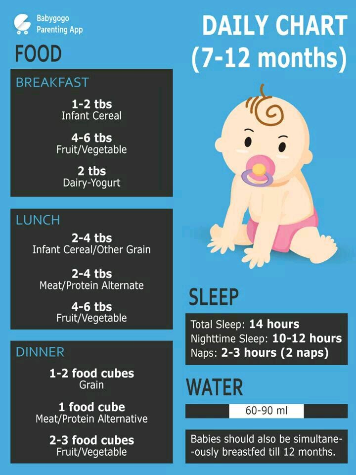 How Much Water Should A 11 Month Old Have : water, should, month, Should, Months, Baby.