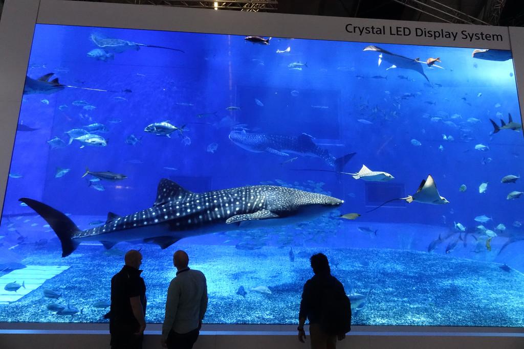 Permalink to Hemos visto en acción la pantalla Crystal LED gigante de Sony y sí, el futuro le pertenece a la tecnología microLED