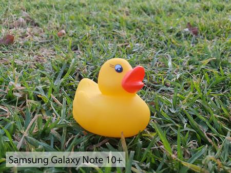 Samsung Galaxy Note 10plus Macro Dia 01