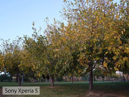 Sony Xperia 5 Auto Dia 02