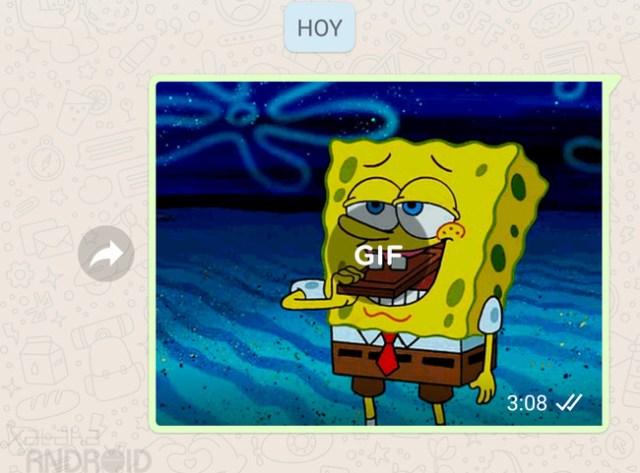 WhatsApp GIF
