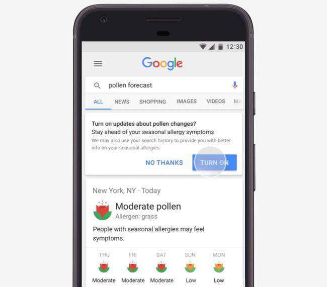 Pollen Forecasts On Google
