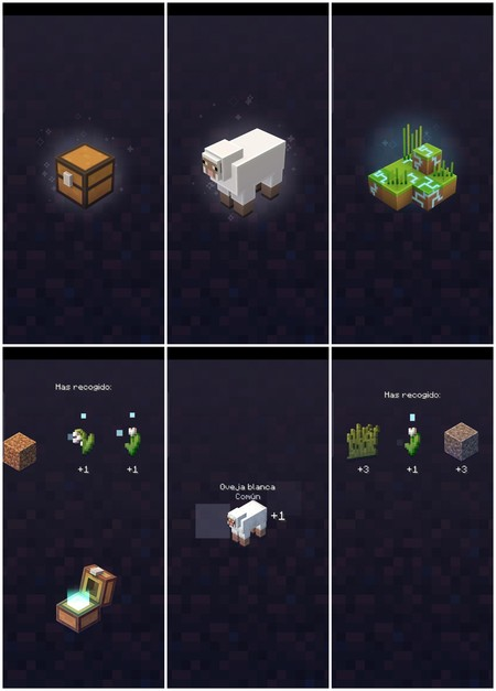 Types Of Loot