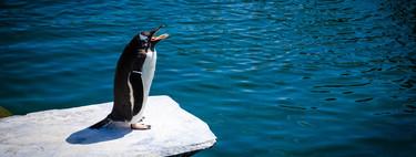 Por qué recomendar que te pases a Linux en 2020 es diferente que en todas las ocasiones anteriores