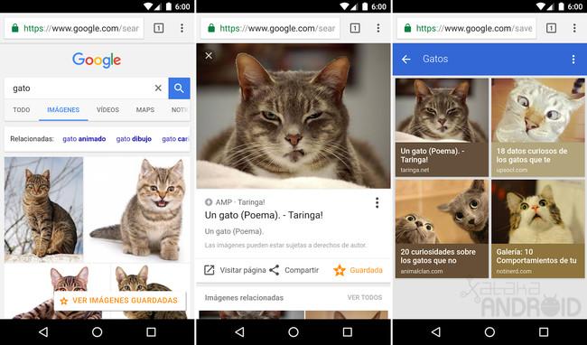 Guardar Imagénes Google