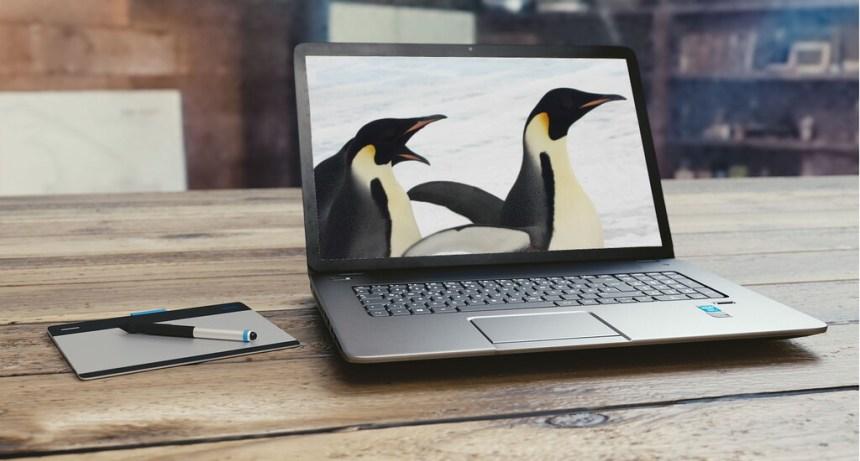 Cada vez hay más fabricantes grandes que venden portátiles con Linux: estas son las principales propuestas