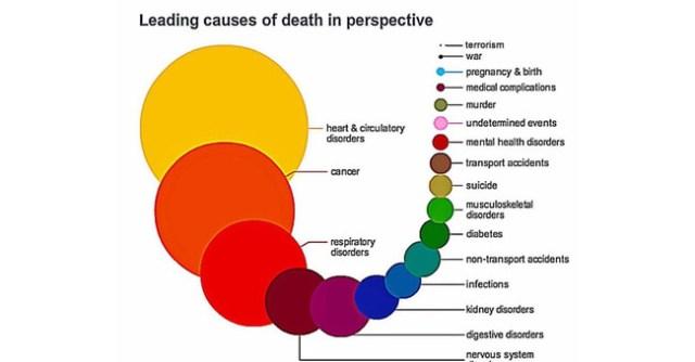 Causas De Muerte