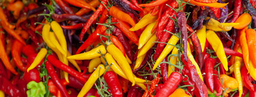 11 chillies, chili peppers, peppers and chillies to make your dishes spicier: how to distinguish them, how to use them and how to rectify them