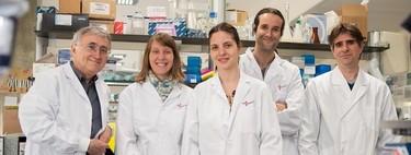 'Estamos ante el mapa más completo del epigenoma de la leucemia': hablamos con los investigadores españoles que lo han descubierto