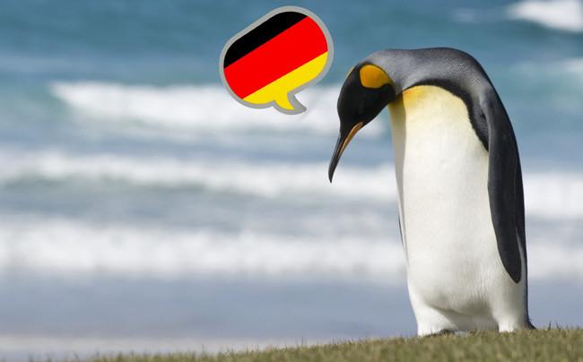 Linux Munich Windows
