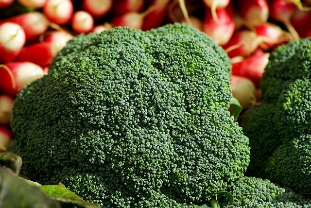 Broccoli 673204 640 1