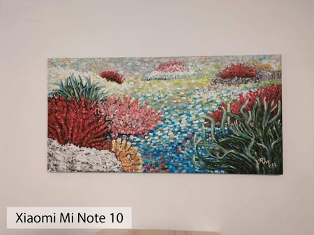 Xiaomi Mi Note 10 Auto Int 02