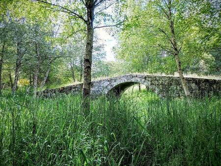 Bridge 1561688 1280
