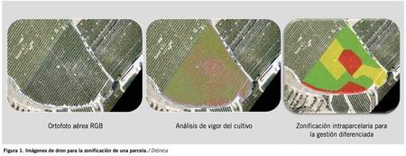 Vía Cuaderno de Campo (larioja.com)