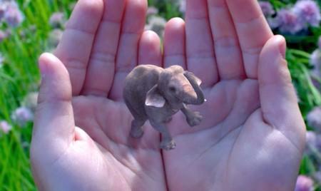 Magic Leap Elefante