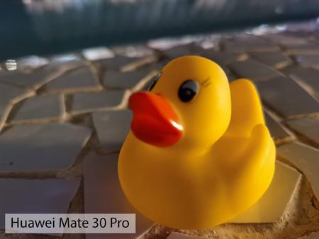 Huawei Mate 30 Pro Macro Noche 01