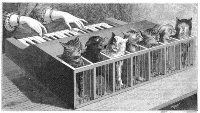 Cat Piano 1883 E1490244432784