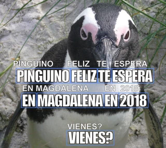 Codeblog Penguin Spanish