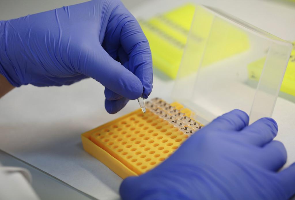 sag-lab-genetica