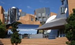 El MIT invertirá 1.000 millones de dólares en un nuevo colegio centrado única y exclusivamente en inteligencia artificial